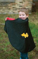 Capa  Reversible mascara SpiderMan/Batman De 4 a 6 anys