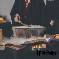 Riñonera Con Bolsillo Exterior De Harry Potter Wizard (230X90X120Mm)