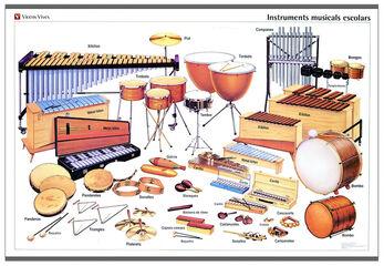 Vvc l instruments escolars/orquestra