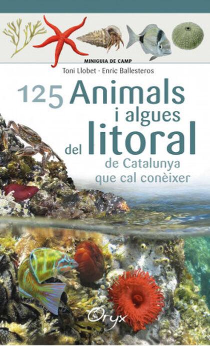 125 animals i algues del litoral de Cata