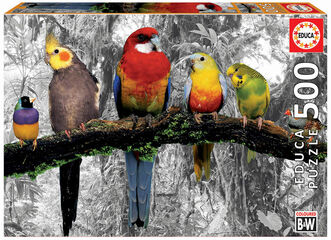 Puzzle Educa Pájaros en la jungla