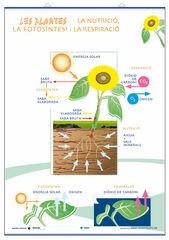 Edigolc lcp parts/nutri.fotosín./70x100