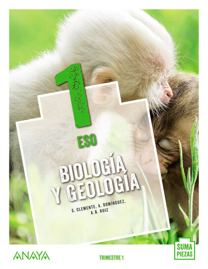Biología Y Geología 1º Eso Anaya Text 9788469875056 Abacus Online
