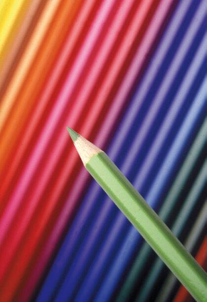 Lápiz de colores Alpino Festival Salmón 12 unidades